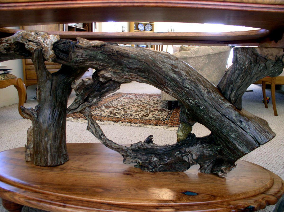 Live oak root table base