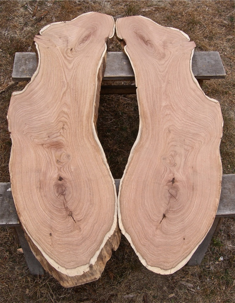 book-matched mesquite slabs